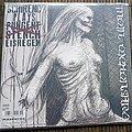 Schirenc Plays Pungent Stench / Eisregen Split