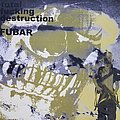 F.U.B.A.R. / Total Fucking Destruction Split