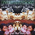 Agoraphobic Nosebleed - Tape / Vinyl / CD / Recording etc - Agoraphobic Nosebleed The glue that bind us