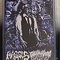 Haggus - Tape / Vinyl / CD / Recording etc - Haggus / Golem Of Gore Split