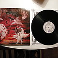 Immolation - Tape / Vinyl / CD / Recording etc - Immolation - Dawn of possession LP First pressing