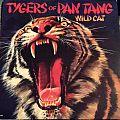 Tygers Of Pan Tang - Wild Cat Tape / Vinyl / CD / Recording etc