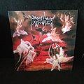 Immolation - Tape / Vinyl / CD / Recording etc - Immolation - Dawn of Possession LP