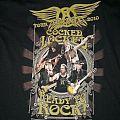 AEROSMITH_-_2010_-_Tour_shirt_1.jpg