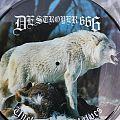 Picture Disc Vinyl  Tape / Vinyl / CD / Recording etc