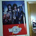 Other Collectable - Rare W.A.S.P  Poster