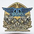 Aerosmith Skeleton and guitar patch (Very rare )