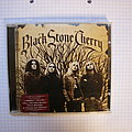 Black Stone Cherry Cd Collection