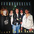 Crumbsuckers Beast On My Back Vinyl (Yellow) 1998  Tape / Vinyl / CD / Recording etc