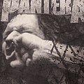 PanterA - vulgar display of power tshirt
