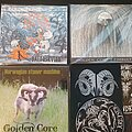Golden Core - Tape / Vinyl / CD / Recording etc - Golden Core - CD collection