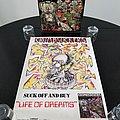 Crumbsuckers ' Life Of Dreams ' Original Vinyl LP + Promotional Poster