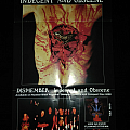 Dismember ' Indecent And Obscene ' Promotional Poster  Other Collectable