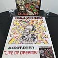 Crumbsuckers - Other Collectable - Crumbsuckers ' Life Of Dreams ' Original Vinyl LP + Promotional Poster