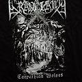 Graveland - TShirt or Longsleeve - Graveland - Carpathian Wolves