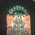 "Cerebral Fix ""Disaster of reality"" TS"