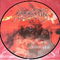 Other Collectable - Obscenity - Intense - PicLP