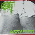 Gut - Assfied / Pussyfied - Single