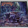 Avulsed - Altar of disembowelment - LP