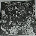 Gore Beyond Necropsy / Disgorge - Split Single