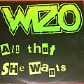 Wizo - All that she wants - Single