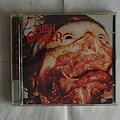 Flesh Grinder - Tape / Vinyl / CD / Recording etc - Flesh Grinder - S.P.L.A.T.T.E.R. - CD