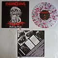 Fleshcrawl - Tape / Vinyl / CD / Recording etc - Fleshcrawl - Festering flesh - lim.edit.Vinyl