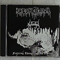 Fleshcrawl - Festering thoughts from the grave - CD
