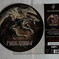 Powerwolf - Tape / Vinyl / CD / Recording etc - Powerwolf - Where the wild wolves have gone - lim.edit.Pic-Single