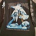 "Cradle Of Filth - TShirt or Longsleeve - Cradle of Filth "" Decadence is a Virtue "" 1998 Longsleeve"