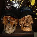 Savage Skull - Patch - SAVAGE SKULL!