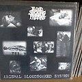 Blood Sucking Freaks - Tape / Vinyl / CD / Recording etc - Blood Sucking Freaks - abismal bloodsoaked system - LP