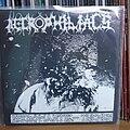 W.B.I. Necrophiliacs - Tape / Vinyl / CD / Recording etc - Necrophiliacs / W.B.I. - Split EP