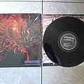 Carnage - dark recollections - LP