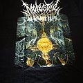 Molested Divinity - TShirt or Longsleeve - Molested Divinity shirt