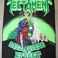 Testament - Greenhouse Effect Backpatch