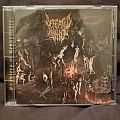Defeated Sanity: Chapters of Repugnance (2010)