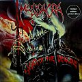 MASSACRA - Signs of the Decline (picture disc, lim.)