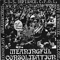 """V/A - Meaningful Consolidation (7"""" double EP)"""