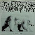 """AGATHOCLES / PP 7 GAFTZEB (& The Calypso Queerleaders) - Cold as Ice / I've never been to the States but I've gone through Hell a Couple of Times (7"""" split EP) Tape / Vinyl / CD / Recording etc"""