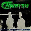 "Candiru - Tape / Vinyl / CD / Recording etc - CANDIRU - Disadvantage of Surprise (7"" single)"