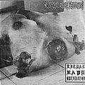 "CATASEXUAL URGE MOTIVATION / SLOUGH - Ritual Rape Mutilation / Slough (7"" split EP) Tape / Vinyl / CD / Recording etc"