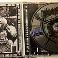 Rotting Flesh/ Morbideath split CD Tape / Vinyl / CD / Recording etc