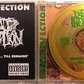Dead Infection - Tape / Vinyl / CD / Recording etc - Dead Infection – Human Slaughter ... Till Remains CD
