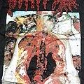 Disgorge – Chronic Corpora Infest SHIRT