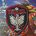 Terminal - Heavy Metal Lokomotiva shield patch