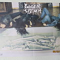 Pungent Stench - Other Collectable - Pungent Stench Vintage Poster Horror Infernal Magazin