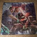 Syphilic In the Pen Flag Other Collectable