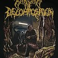 Stages of Decomposition pullover hoodie  Hooded Top