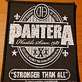 Pantera 2014 Stronger Than All patch